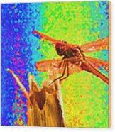 Dragon Fly- Creative Wood Print