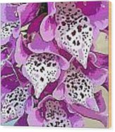 Dragon Lilly Wood Print