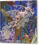 Dragon Sea Horse Wood Print