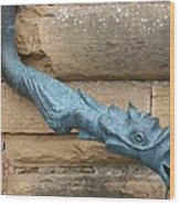Dragon Waterspout  Chateau De Cormatin Wood Print
