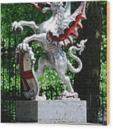 Dragon With St George Shield Wood Print