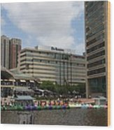 Dragonboats - Inner Harbor Baltimore Wood Print