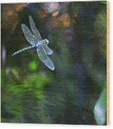Dragonfly No 1 Wood Print