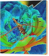 Dragonfly On A Cosmic Rose Wood Print