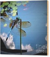 Dragonfly Reflecting On A Beautiful Day Wood Print