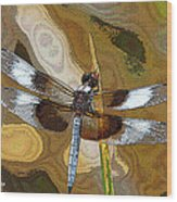 Dragonfly Waiting For A Fly Wood Print