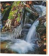 Dragons Teeth Icicles Waterfall Great Smoky Mountains Painted  Wood Print