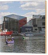 Dragoon Boats - Baltimore Inner Harbor Wood Print