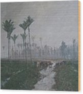 Drainage Channels On The West Coast Wood Print