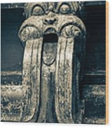 Drainage Ornament On Hindu Seetha Amman Temple In City Seetha Eliya Wood Print