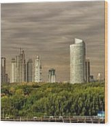 Dramatic Modern Buenos Aires Wood Print