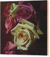 Dramatic Purple And Yellow Roses Wood Print