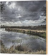 Dramatic Swamp... Wood Print by Israel Marino