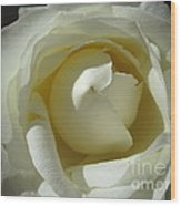 Dramatic White Rose 2 Wood Print
