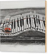 The Piano Has Been Drinking... Wood Print