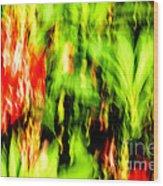 Dream Garden - 252 Wood Print