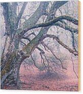 Dream Oak II Color 2 Wood Print
