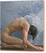 Dream Of Icarus Wood Print