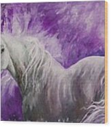 Dream Stallion Wood Print