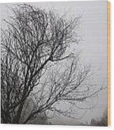 Dreamer Tree Wood Print