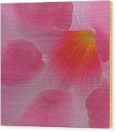 Dreaming In Pink Wood Print