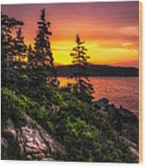 Dreaming Of Acadia Wood Print