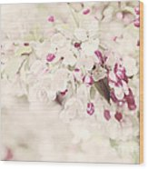 Dreaming Of Spingtime Blossom Wood Print