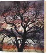 Dreaming Tree Wood Print
