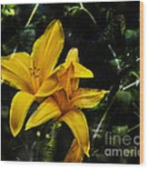 Dreams Of A Day Lily Wood Print