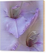 Dreams Of Purple Gladiola Flowers Wood Print by Jennie Marie Schell