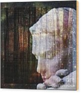 Of Lucid Dreams / Dreamscape 4 Wood Print