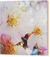 Dreamy Blossom Wood Print