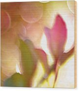 Dreamy Ethereal Pink Tulip Bokeh Circles Wood Print