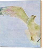 Dreamy Soft Seagull Wood Print