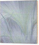 Dreamy Softness. Pastel Grasses Wood Print