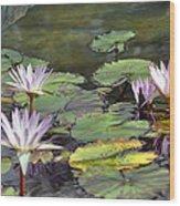 Dreamy  Water Lillies Wood Print