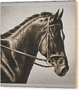 Dressage Horse Old Photo Fx Wood Print by Crista Forest