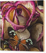 Dried Rose And Butterfly Wood Print