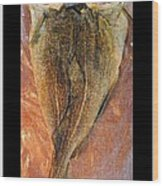 Dried Salted Codfish Back Wood Print