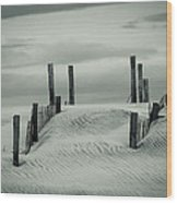 Drifting Dunes Wood Print by Tom McGowan