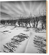 Drifting Snow Wood Print by John Farnan