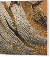 Driftwood 2 Wood Print by Adam Romanowicz
