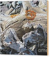 Driftwood Abstract Wood Print