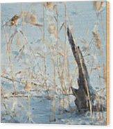 Driftwood Abstract Wood Print