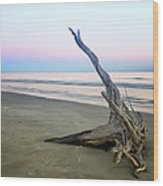 Driftwood At Dusk Wood Print