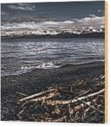 Driftwood At Land's End Wood Print
