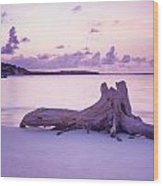 Driftwood At Sunset Wood Print