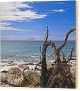 Driftwood Island Wood Print