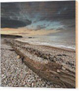 Driftwood Laying On The Gravel Beach Wood Print