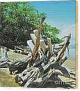 Driftwood On A Maui Beach Wood Print